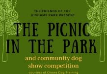 The Picnic in The Highams Park